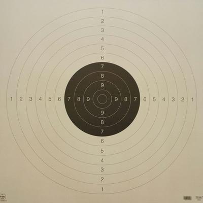 Pistoolitaulu 22 55*55 cm