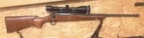 Remington Sportsman 78 30-06 TT=2